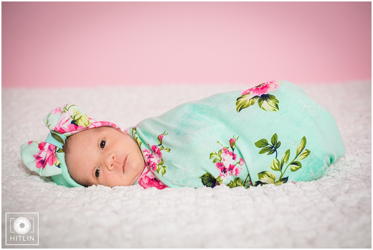 The Willimas' Family Newborn #2 Session