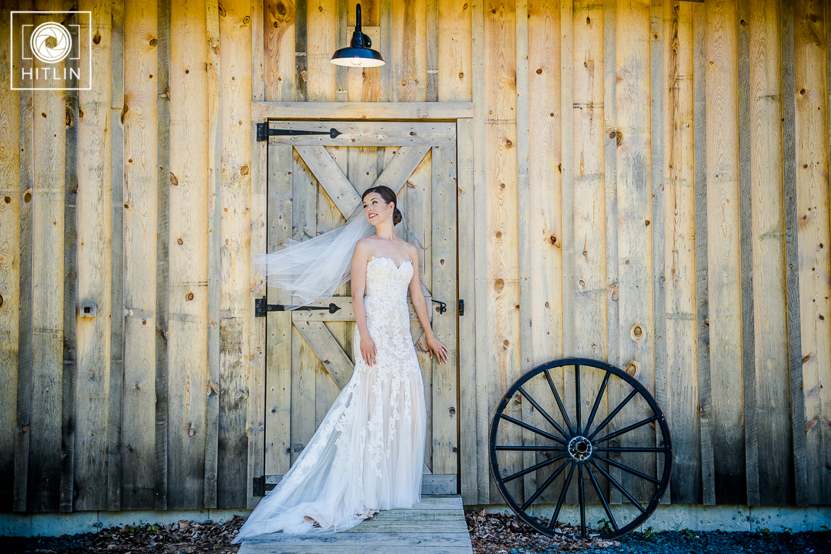 Greywacke Meadows_wedding_003_4526